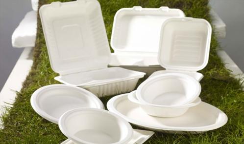 Da piatti di plastica a biodegradabili: le scuole di Milano dicono addio alla plastica