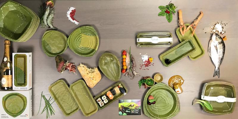 Piatti con foglie nuove stoviglie biodegradabili al 100%